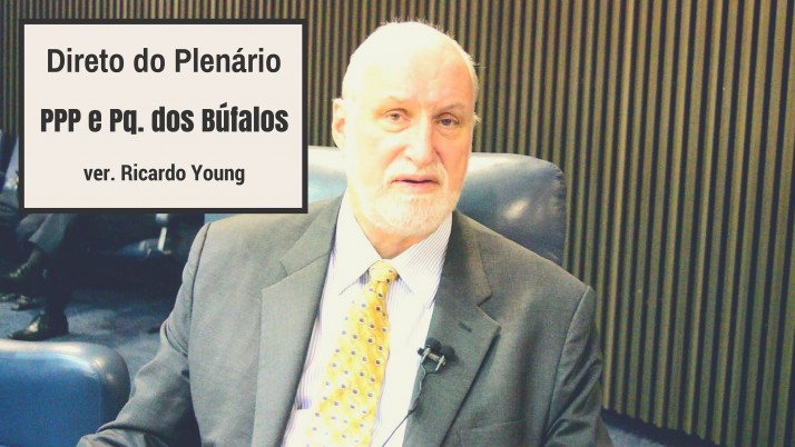 Vídeo: Direto do Plenário sobre a PPP para a Iluminação e o Pq dos Búfalos