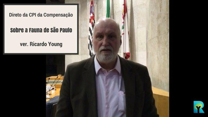 Vídeo: Direto da CPI de Compensação sobre a Fauna da Capital